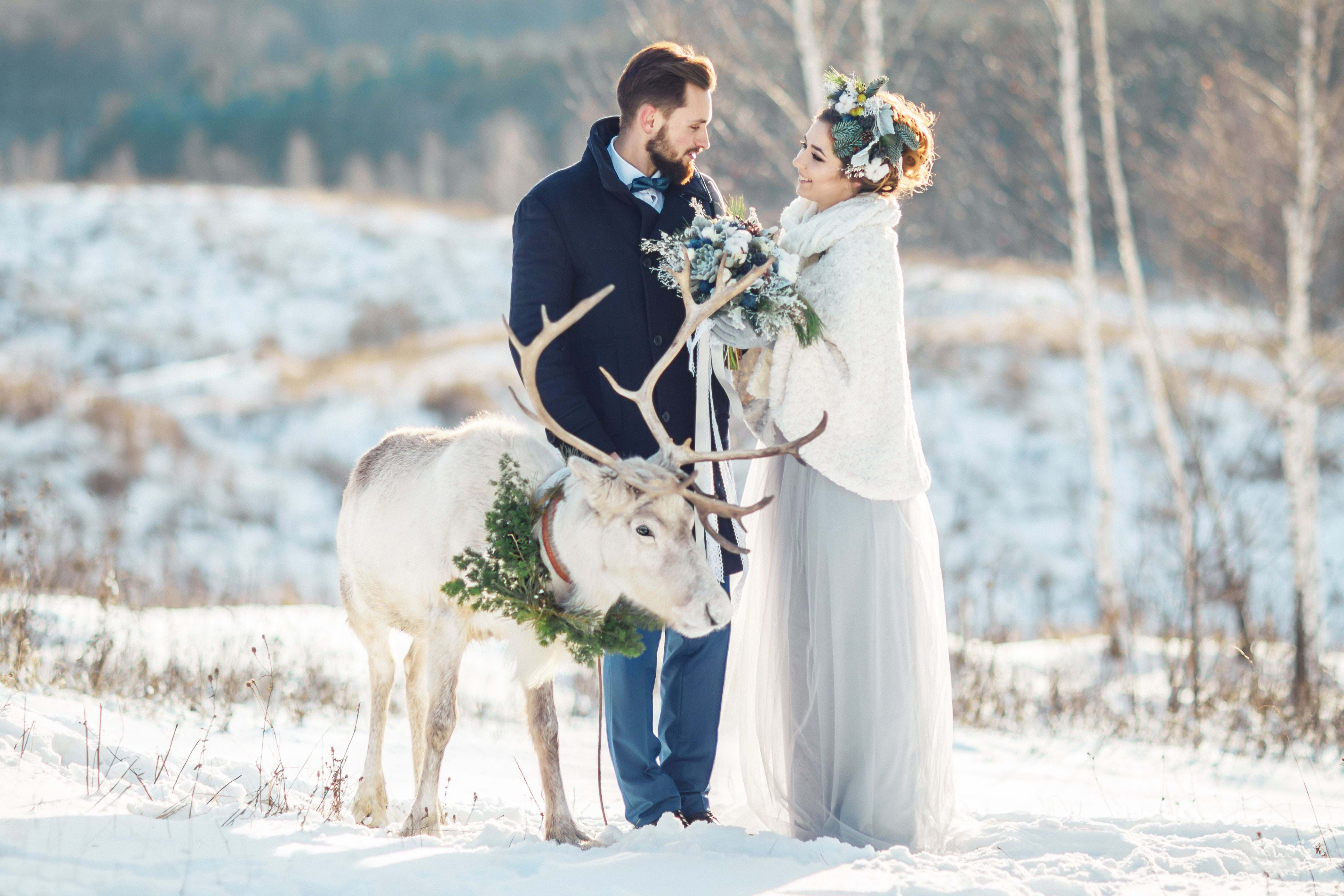 Lapland, Magical settings for a real fairy-tale wedding